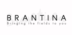 Brantina